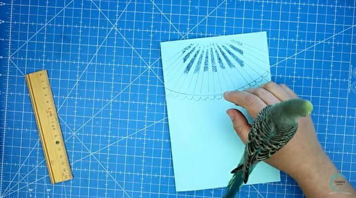 dibujo de carpa para decorar el art journal